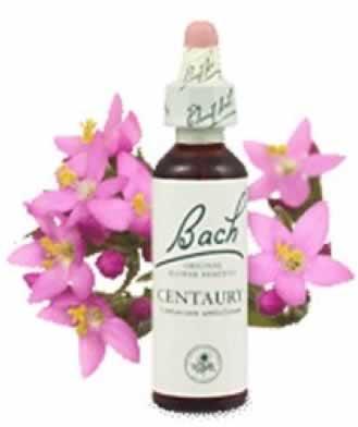 Flor de Bach Centaury 2