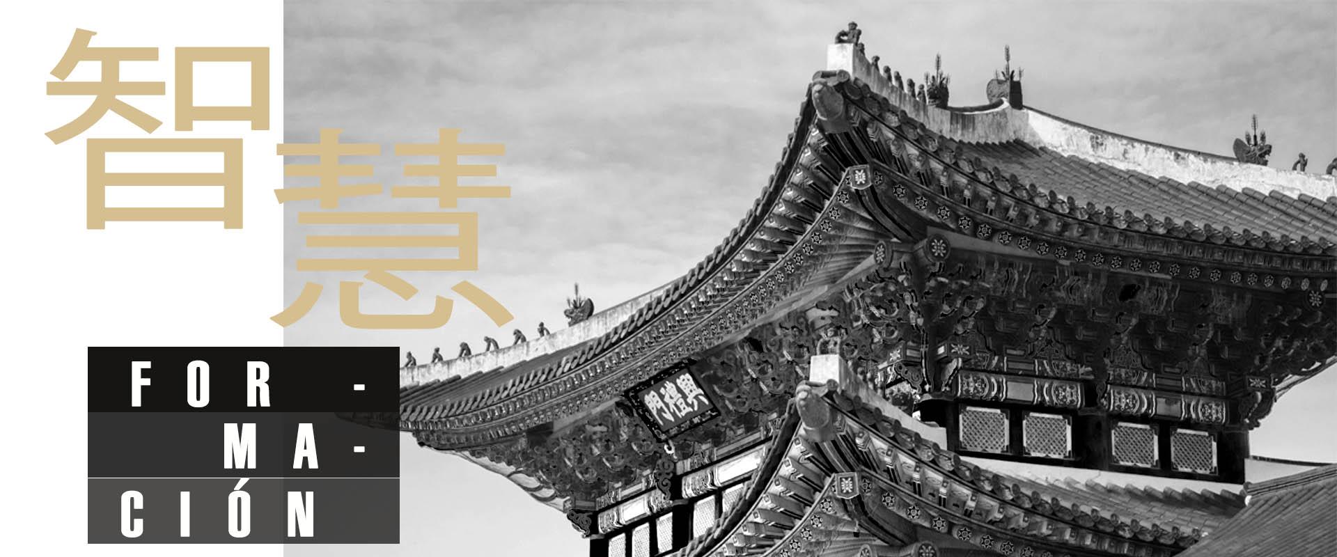 formacion-medicina-china-técnicas-naturales